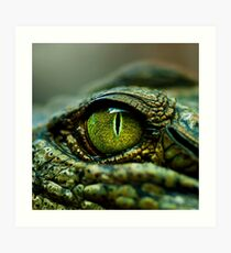Eye of the Crocodile [iPad / Phone cases / Prints / Decor] Art Print