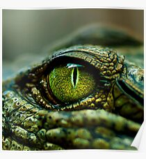 Eye of the Crocodile [iPad / Phone cases / Prints / Decor] Poster