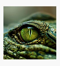 Eye of the Crocodile [iPad / Phone cases / Prints / Decor] Photographic Print