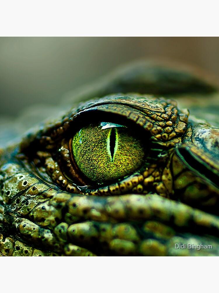 Ojo del cocodrilo [iPad / Estuches para teléfono / Impresiones / Decoración] de GreenEyedHarpy