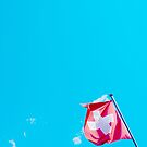 Swiss flag by TimConstable