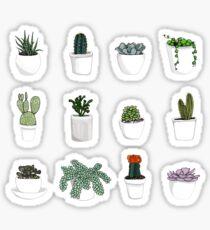 Succulents 2 Sticker