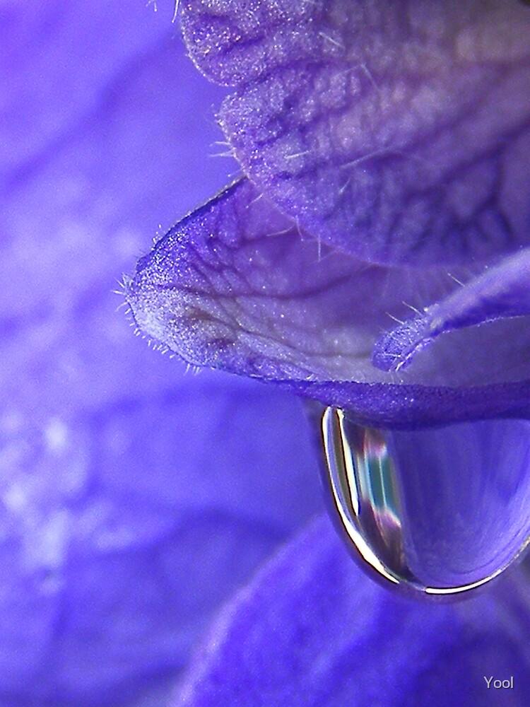 Purple rain by Yool