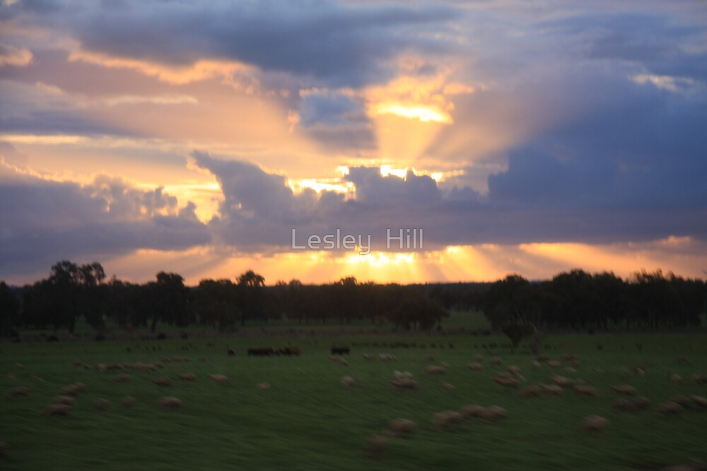 West Australian Sunset by Lesley  Hill