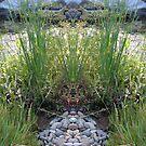 NCgarden fantasy 1 by Northcote Community  Gardens