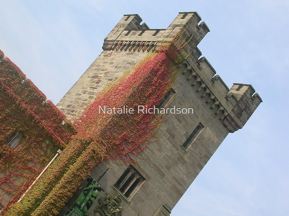 Alton Towers Castle by Natalie Richardson