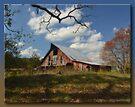 Red Barn in Fall by Sheryl Gerhard