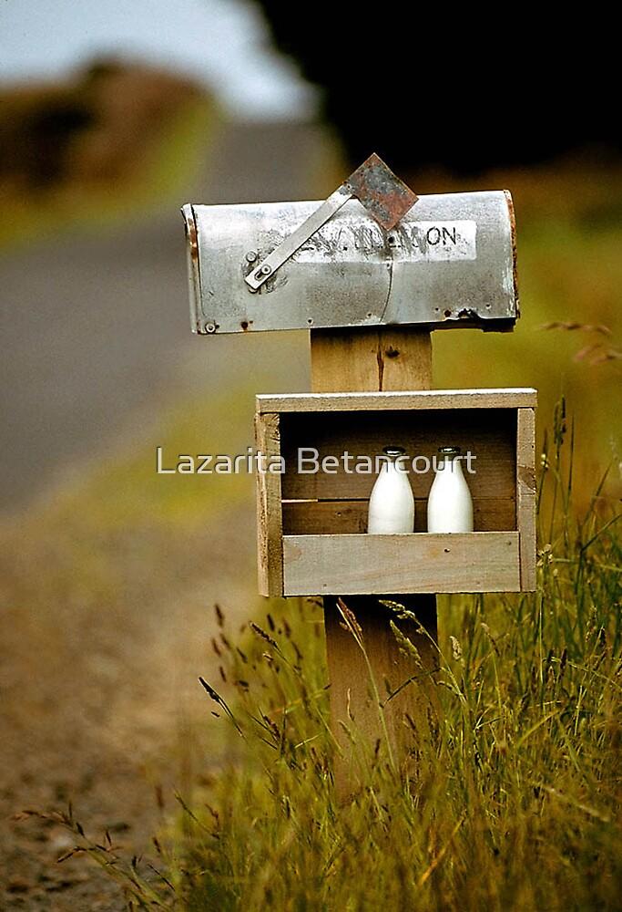 Old Mailbox by Lazarita Betancourt