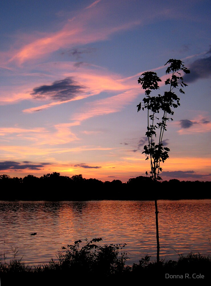 Sunset over the Rock River by Donna R. Cole