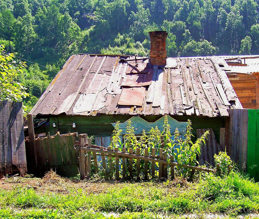 A house in Baikal, Siberia by Brita Lee