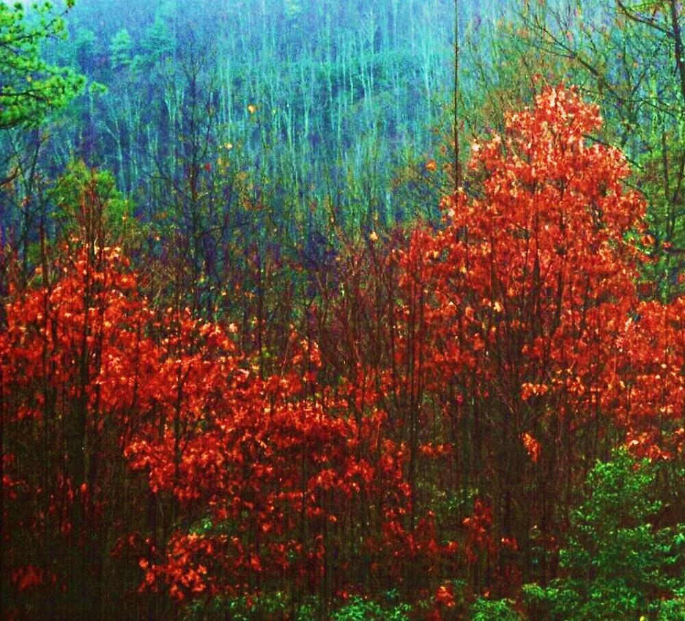 Cumberland Gorge by Marie Monroe