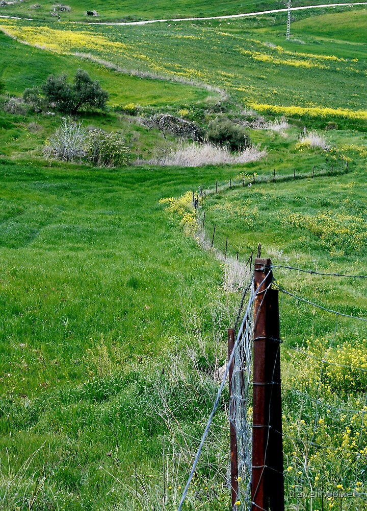 Fence by travelingpixel