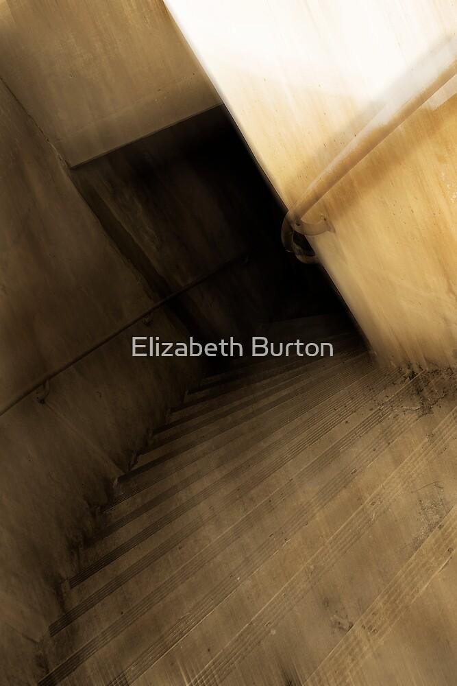 Dark Descent by Elizabeth Burton