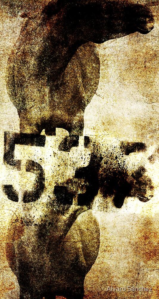 HORSE 537 by Alvaro Sánchez