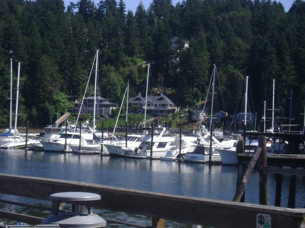 THE BOATS AT GIG HARBOR by MsLiz