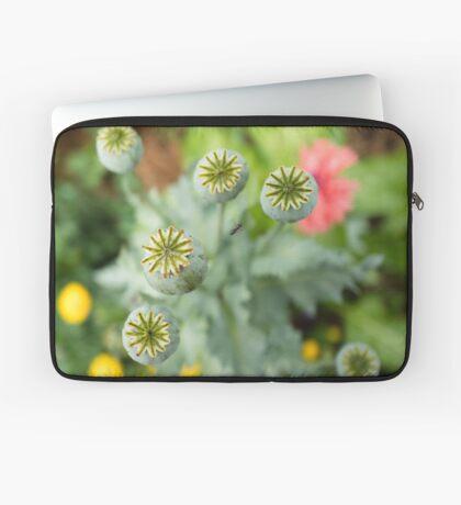 Patterns in Poppy Pods Laptop Sleeve