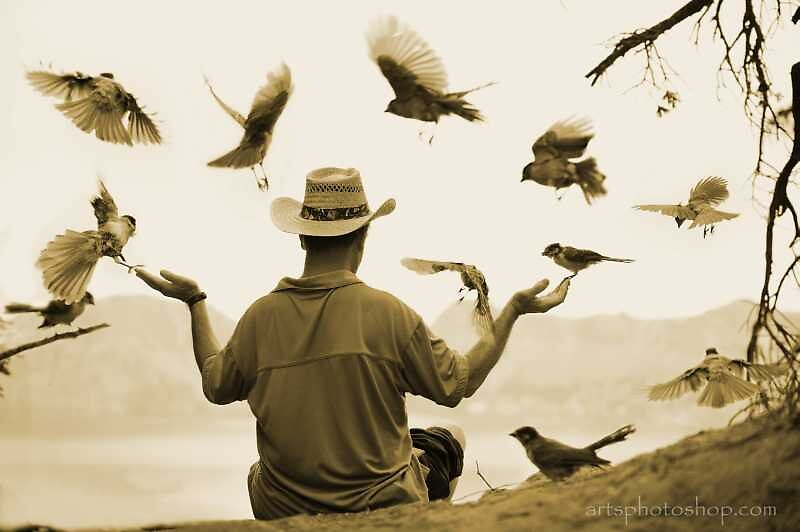 Bird Man by artsphotoshop