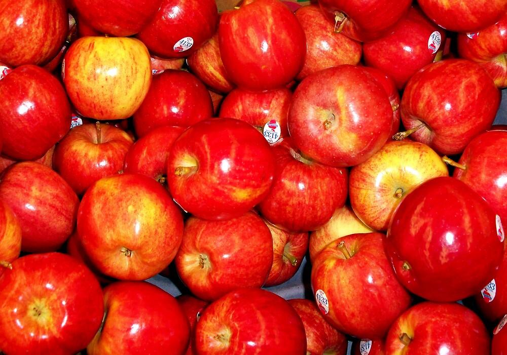 An apple a Day by deegarra