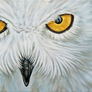 Snow Owl by ArtsandDogs