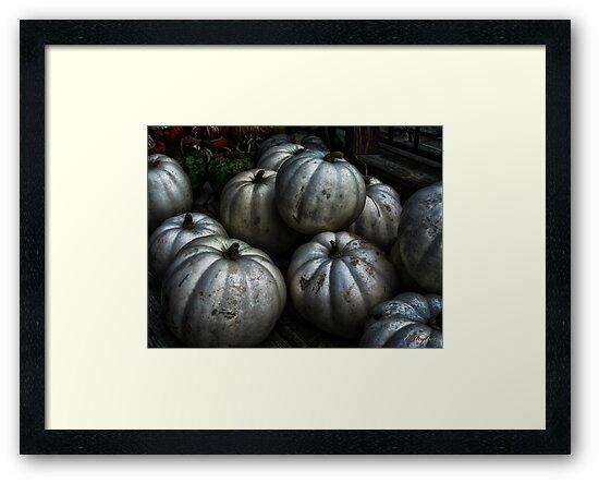 Ghost Pumpkins  by kelleybear