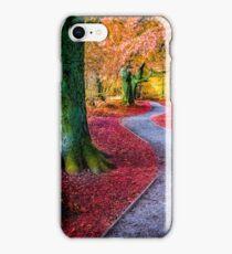 Autumn woodland trail iPhone Case/Skin