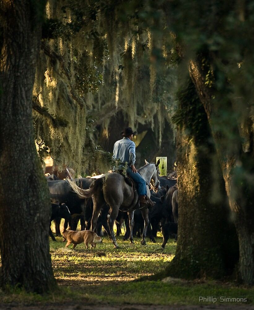 Working Florida Cowboy by Phillip  Simmons