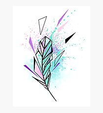 Polygonal Feather with Watercolor Photographic Print