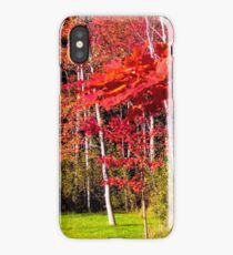 Canadian Maple iPhone Case/Skin
