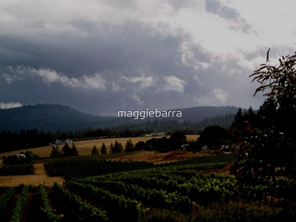 Bethel Heights Vineyard in Oregon by maggiebarra