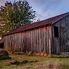 Standing Still - Old Barn Photography by Gregory Ballos