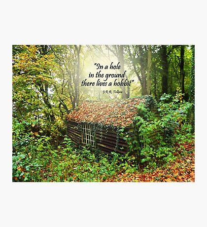 Enchanting Devon  Forest  Photographic Print