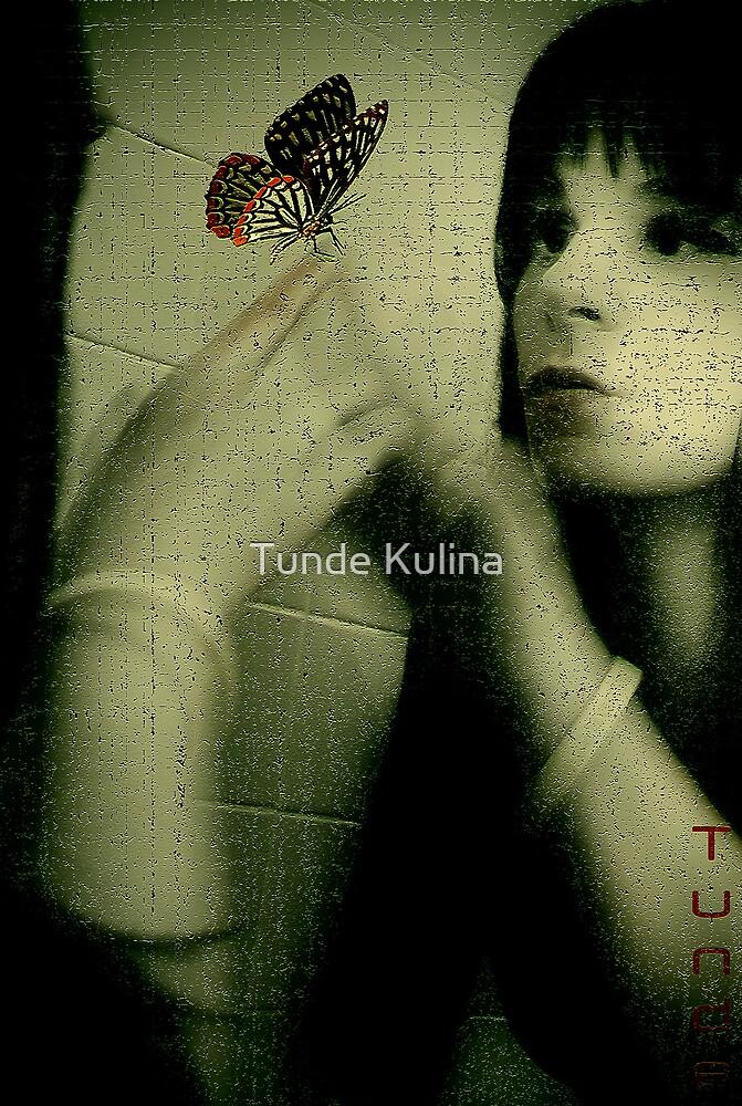 Pillango by Tunde Kulina
