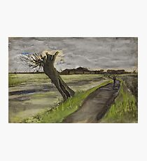 Pollard Willow Vincent van Gogh Photographic Print