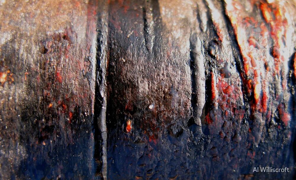 Bark by Al Williscroft