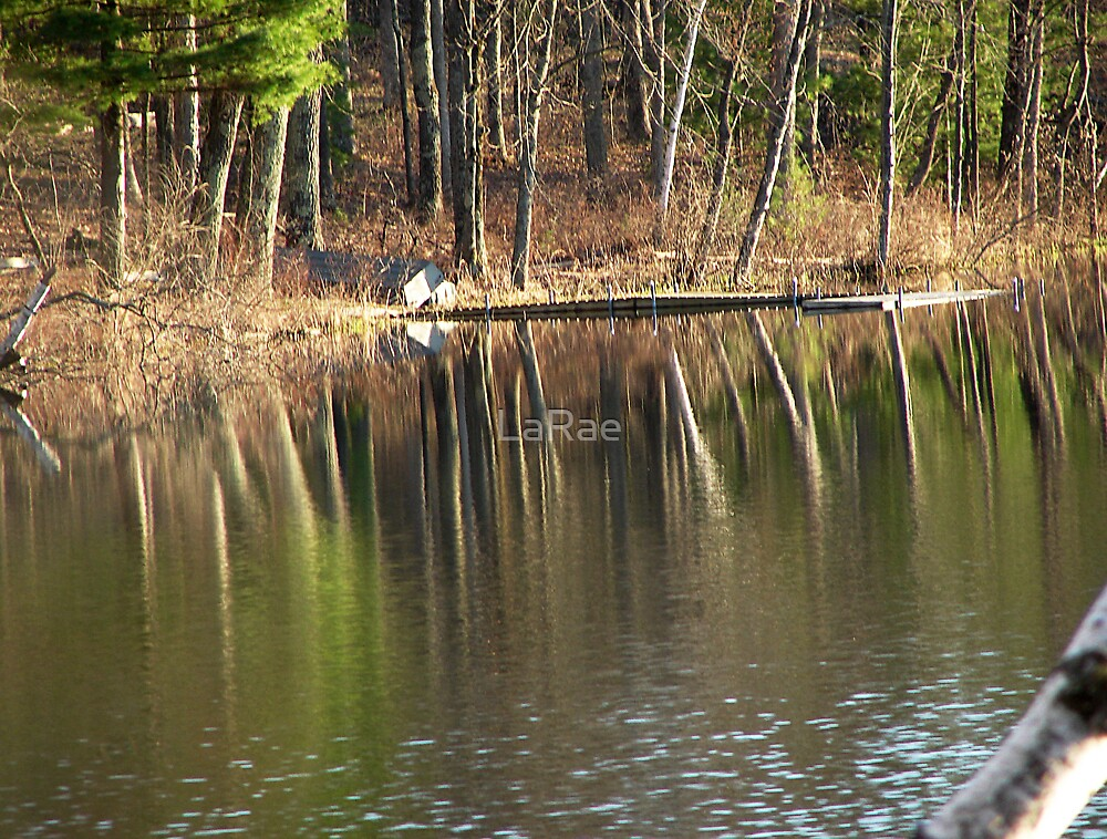 Reflections on the Lake by LaRae