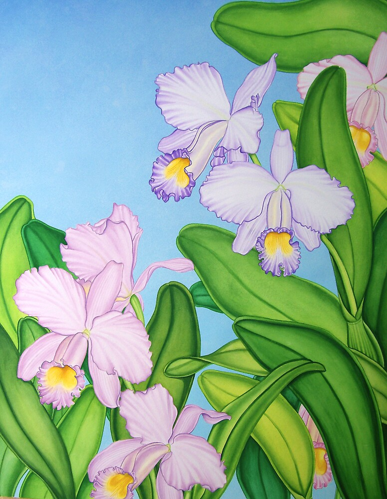 Violet Cattleya Orchids by joeyartist