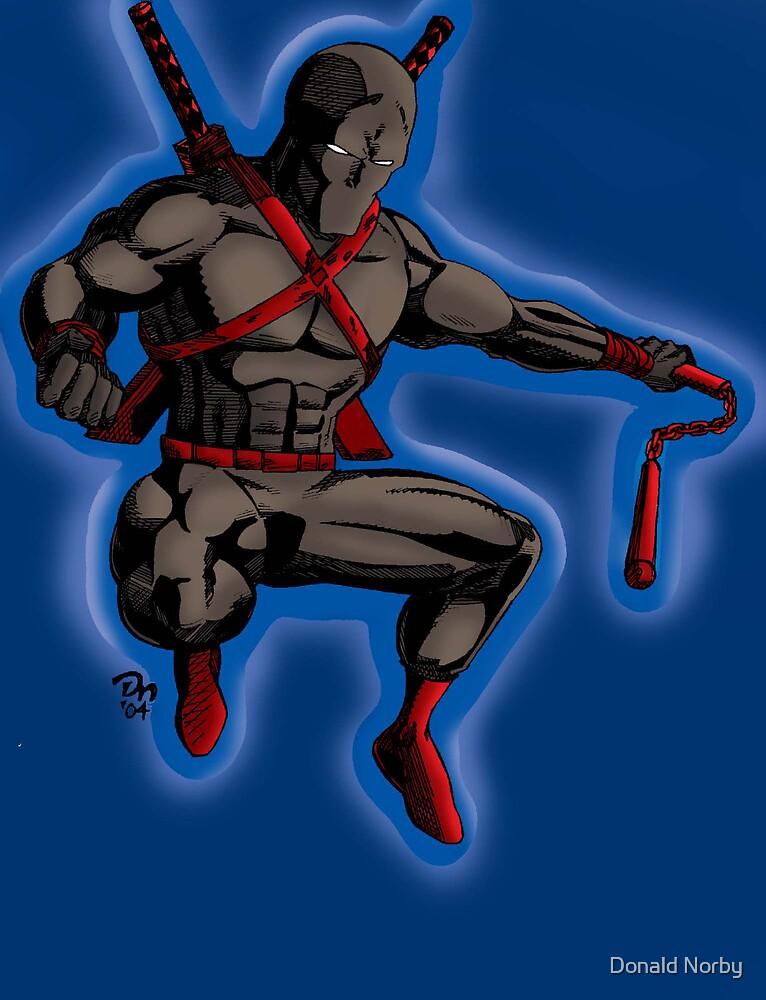 Ninjer the ninja by Donald Norby