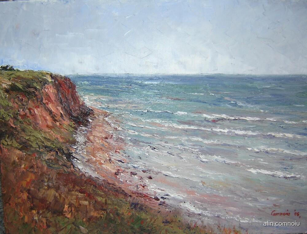 the sea by alin comnoiu