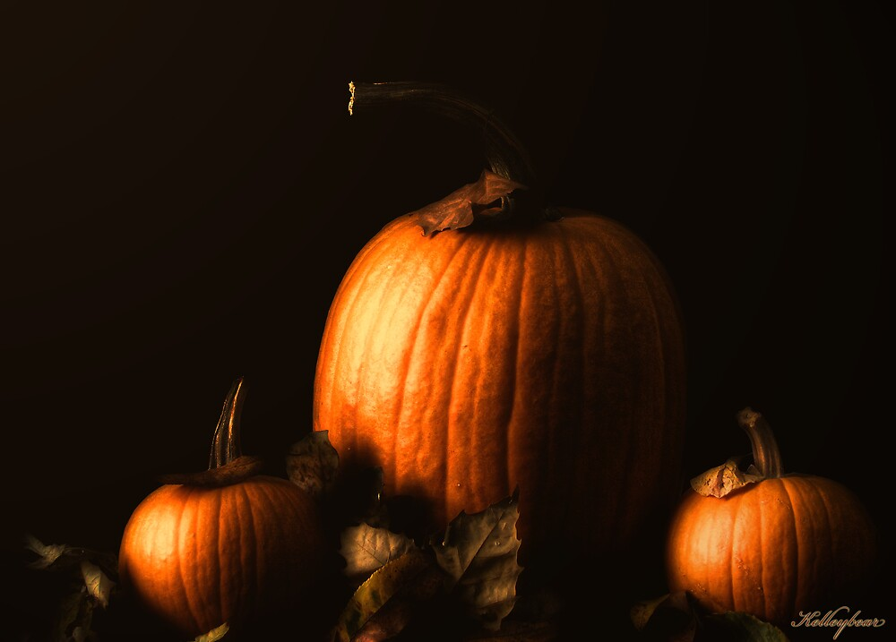 Pretty Pumpkins  by kelleybear