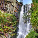 Pistyll Rhaeadr waterfall  by Jon Baxter