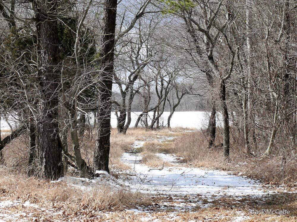 Winter Walk in the Rhode Island Wood  by Jack McCabe