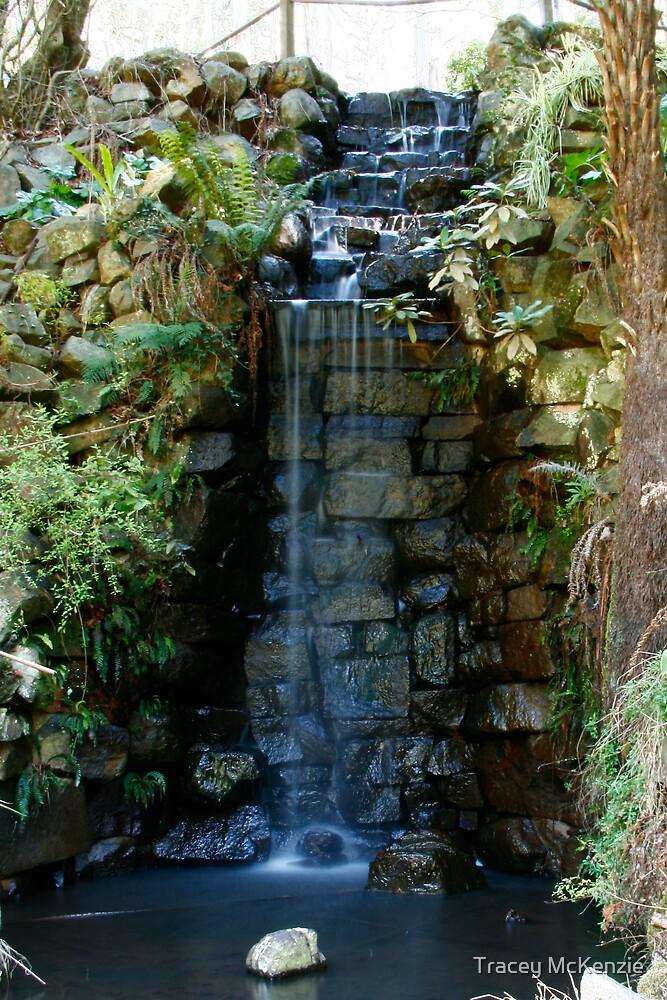 Alfred Nicholas Gardens ~ Falls by Tracey McKenzie