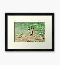 A DAY IN THE LIFE OF A CHEETA - CAPTURE SIX - CHEETAH – Acinonyx jabatus – Die Jagluiperd Framed Print