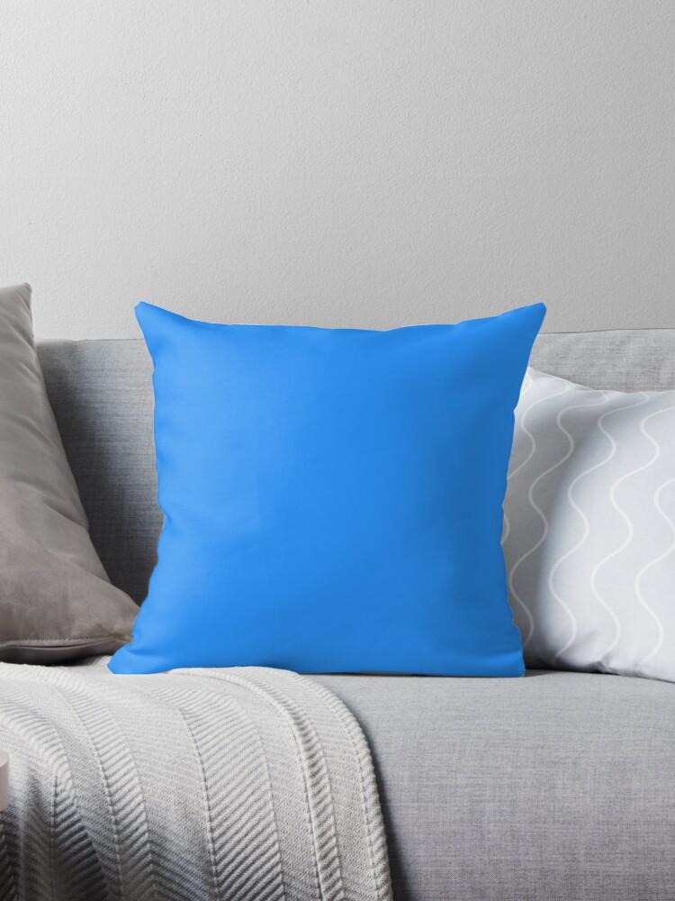 Beautiful Cushions/ Plain Dodger Blue by ozcushions