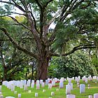 Final Resting Place by Cynthia48