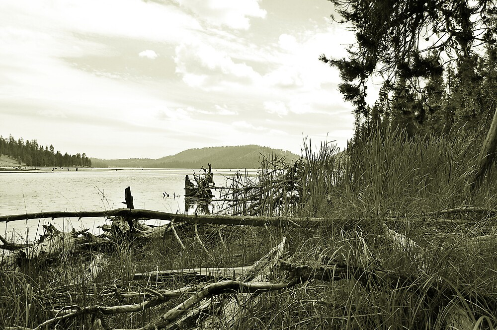Land and Lake by ogercaveman