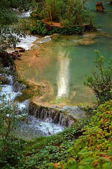 Moony Falls Reflection by Mark Ramstead