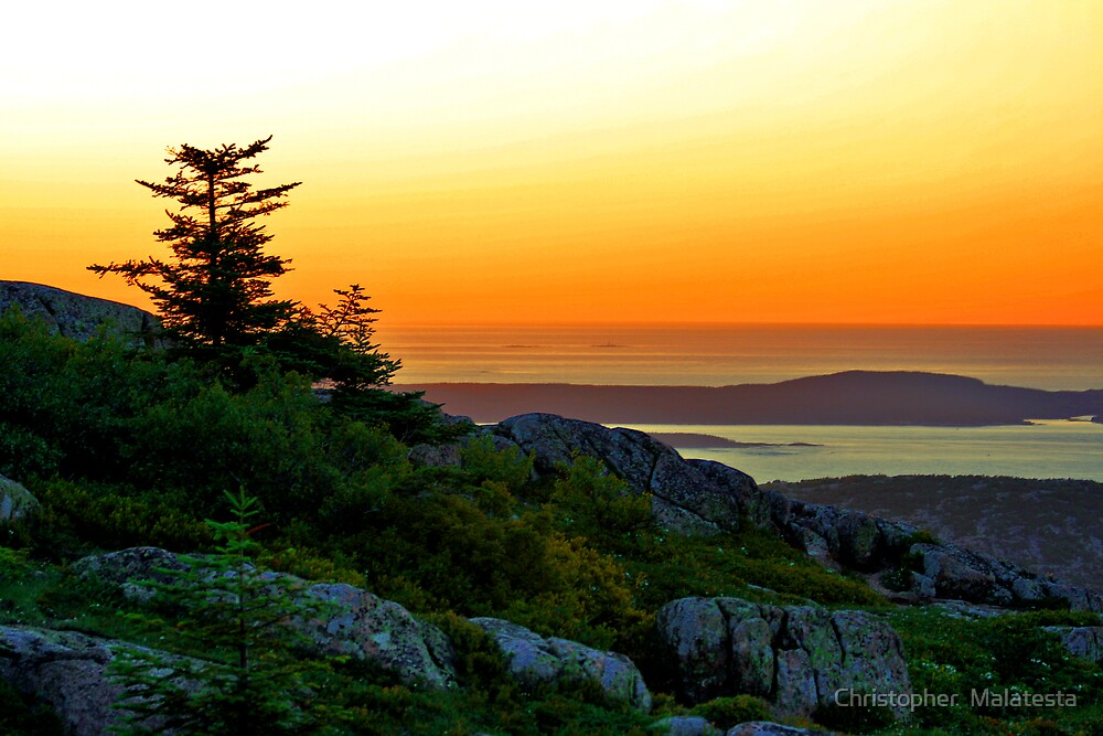 Sunrise Cadillac Mountain by Christopher  Malatesta
