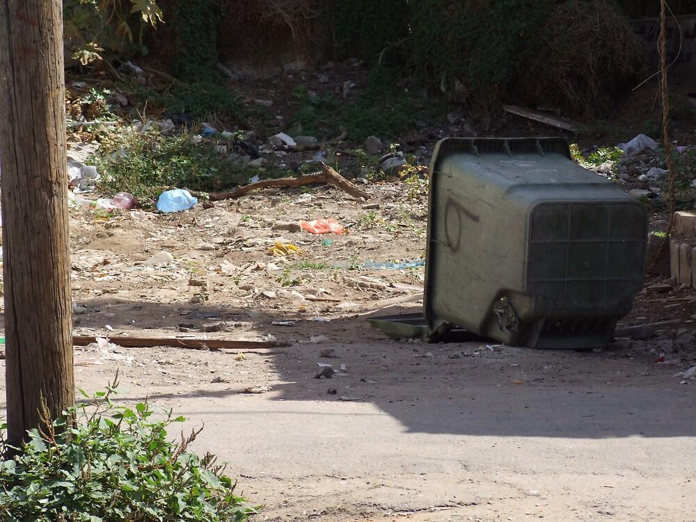 Garbage those who tarnishes by Flavia Di segni