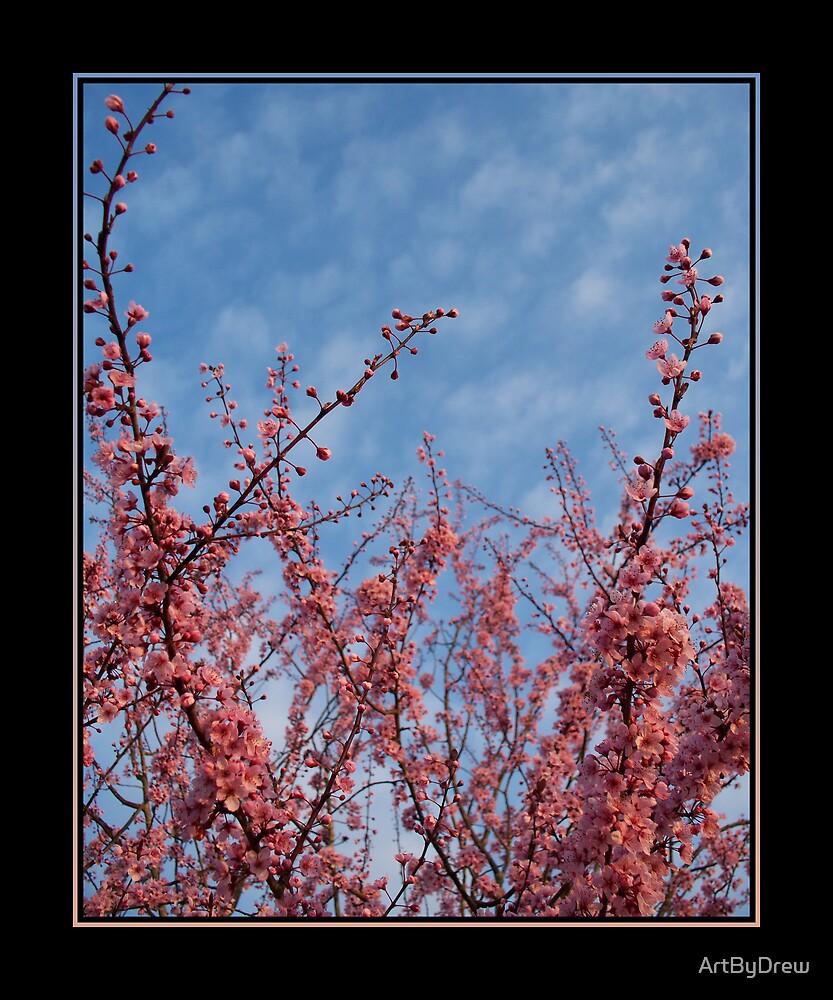 Cherries Jubilee by ArtByDrew